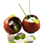 coconut lime verbana soap