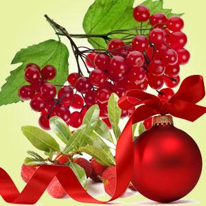 kringleberry fragrance oil
