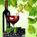 Shiraz Wine Scent