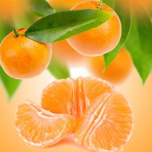 tangerine scent
